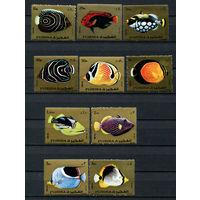 Фуджейра - 1972 - Рыбки - [Mi. 1380-1389] - полная серия - 10 марок. MNH.