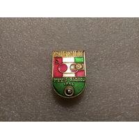 Суперкубок УЕФА Динамо Киев-Стяуа Румыния 86