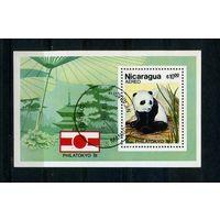 Никарагуа 1981г. панда, 1 блок