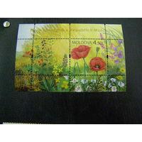 Молдавия 2009. флора Цветы марки и блок.