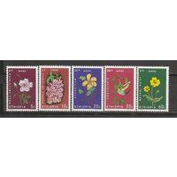КГ Эфиопия 1965 Цветы