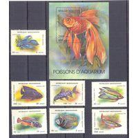 Мадагаскар фауна рыбы