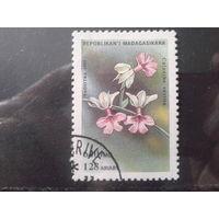 Магадаскар 1993 Цветы