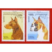 Камбоджа. Собаки. ( 2 марки ) 1996 года.