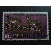 Нигерия 1973 гепарды