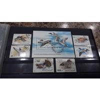 Птицы, утки, фауна - марки и блок -  Йемен, 1992