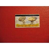 Марка Открытие сети станции спутниковой связи 1981 год Ангола