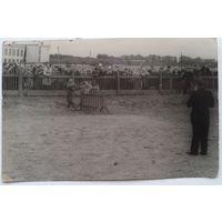 Фото на соревнованиях по служебному собаководству. 1960-е. 9х14 см.