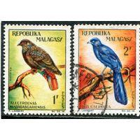 Мадагаскар. Птицы, вып.1963