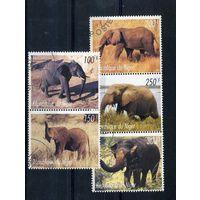 Нигер 1998г. слоны, 5м.