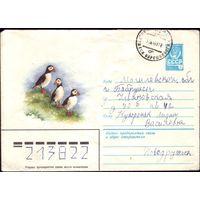 1980 год ХМК А.Исаков Тупики 80-660