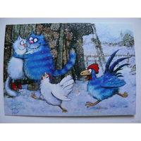 Современная открытка, Зенюк Ирина, Кот и Петух ухлёстывают за дамами; чистая.