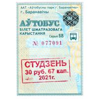 Проездной Барановичи январь 2021