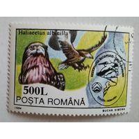 Румыния 1994. Орел