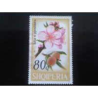 Албания 1969 абрикосы