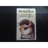 Нигерия 2001 обезьянка, концевая марка Mi-2,6 евро гаш.