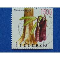 Индонезия. Флора 2004г.