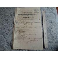 Врачебная служба Полесских казенных железных дорог,протокол 1913 год.