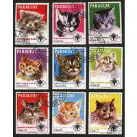 Кошки. Парагвай. 1979. Полная серия. 9 марок. Гаш.