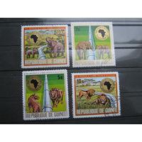Марки - фауна, Гвинея, слон, лев - дикие кошки