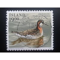Исландия 1989 птица