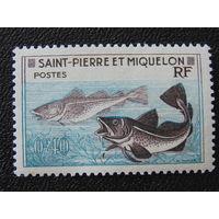 Острова Сен-Пьер и Микелон 1957 г. Фауна.