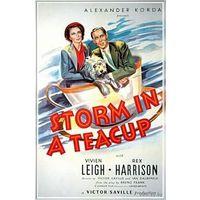 Буря в стакане воды / Storm in a Teacup (Вивьен Ли)  DVD5