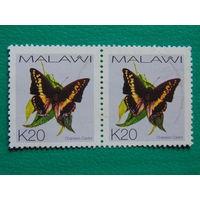 Малави. Бабочки.