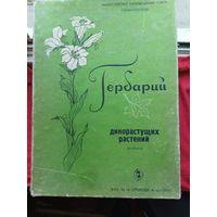 Гербарий дикорастущих растений,в коробке, СССР