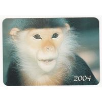 Календарик 2004 (58)