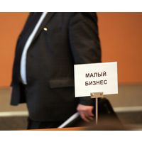 Проблемы развития малого и среднего предпринимательства в Республике Беларусь - макроэкономика - курсовая работа