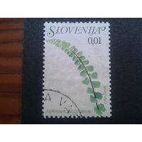 Словения 2007 стандарт, цветы