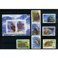 Кыргызстан, 1995г. дикие звери, 7м. 1 блок