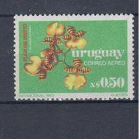 [1516] Уругвай 1976. Флора.Цветы.Орхидеи.