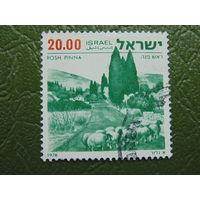 Израиль. Флора. 1978г.