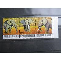 Марки - фауна, Гвинея, слоны