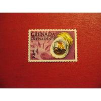 Марка раковины 1976 год Гренада