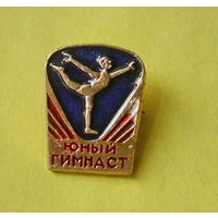 Юный гимнаст. 189.
