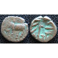 YS: Индия, Нарвар, короли Нага, IV век, 1/2 какини ок. 340, животное