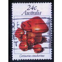 Австралия 1981 Mi# 762 (AU018) гаш.