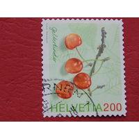 Швейцария 2006г. Цветы.