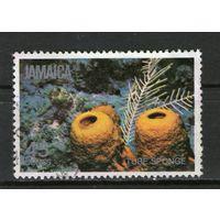 Ямайка. Гашеная. Лот-18