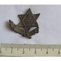 Кокарда еврейской гимназии