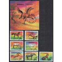 Танзания /1993/ Фауна / Лошади / Породы Лошадей / ПОЛНАЯ Серия 7 Марок плюс Блок.