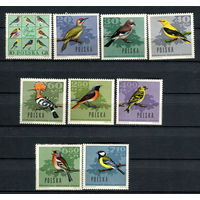 Польша - 1966 - Птицы - [Mi. 1718-1726] - полная серия - 9 марок. MNH.