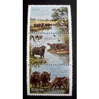 Бразилия 1984 г. Буйволы острова Маражо. Фауна, полная серия из 3 марок, сцепка. Чистые #0002-Ч1