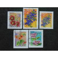 Южная Африка 2000г.  Цветы.