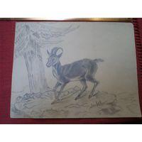 Авторский европейский рисунок-6