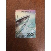 Танзания 1993. Акула Hexanchus Grisens