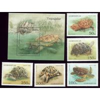 Блок и 5 марок 1995 год Азербайджан Черепахи 223-227 13